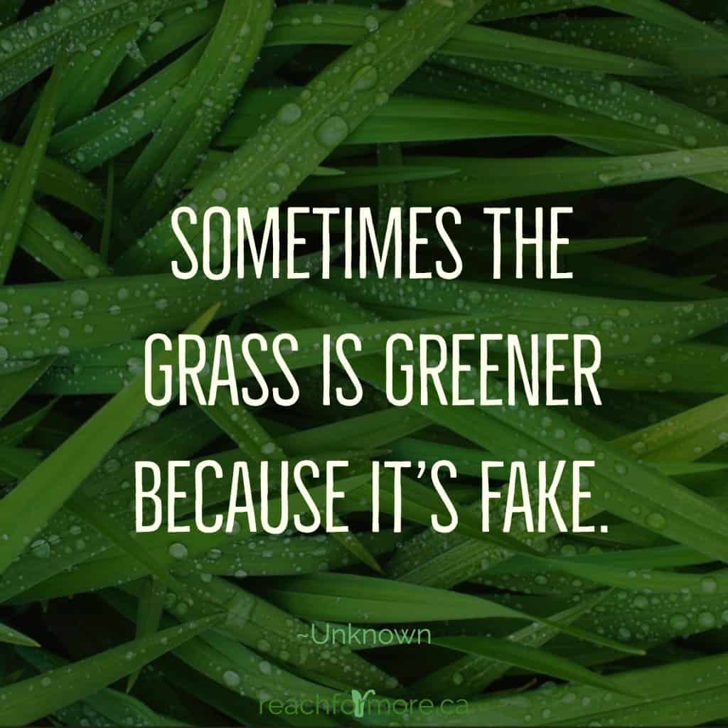 Sometimes the grass is greener because it's fake - stay focused in an age of comparison - Unknown  inspirational quote   How to stay focused in an age of comparison.